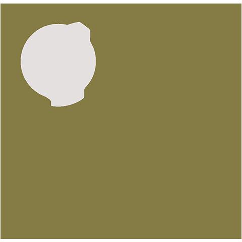 Corporate Internal Investigations / Corporate Governance